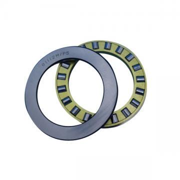 6,35 mm x 25,908 mm x 6,35 mm  NMB ARR4FFN-2B Spherical bearing